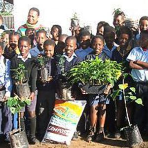 Sithandimvelo Environmental Education Project