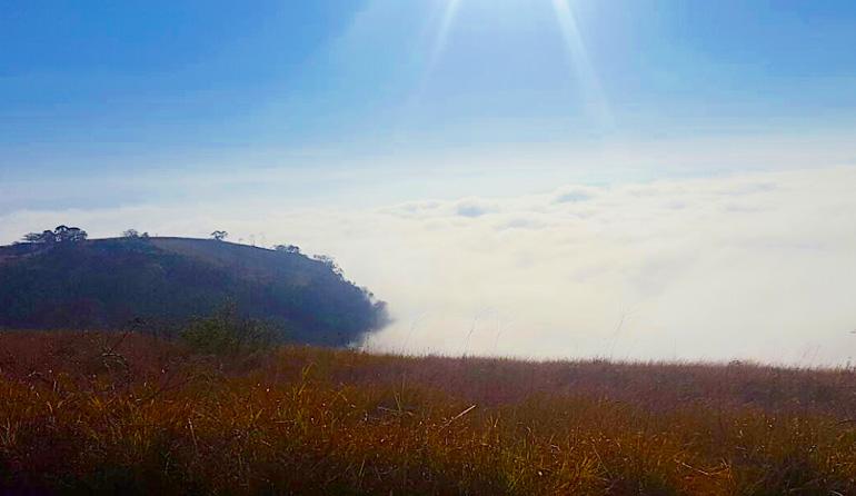 The Grassland at Monteseel