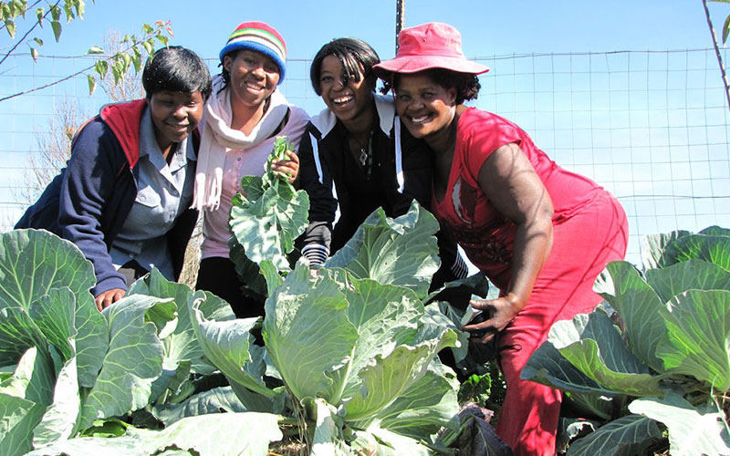 Mpophomeni Conservancy. Conservation is also about being able to grow nutritious, wholesome food from healthy soil